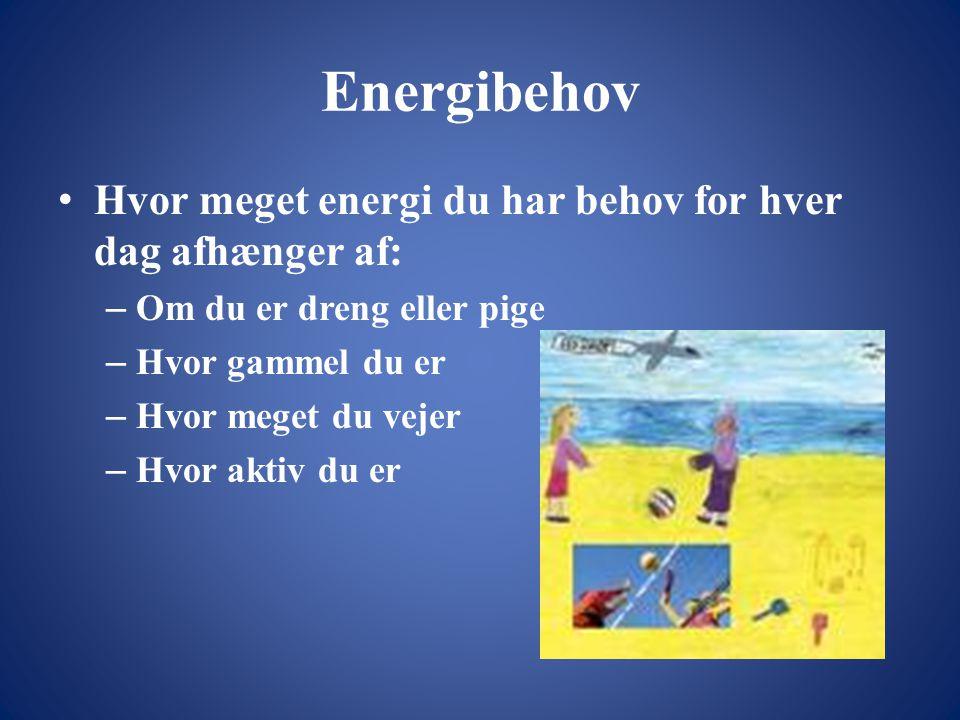 Energibehov Hvor meget energi du har behov for hver dag afhænger af: