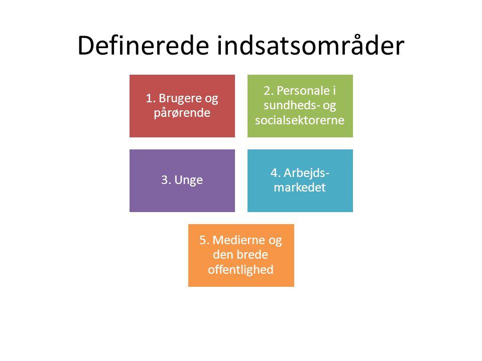 Definerede indsatsområder