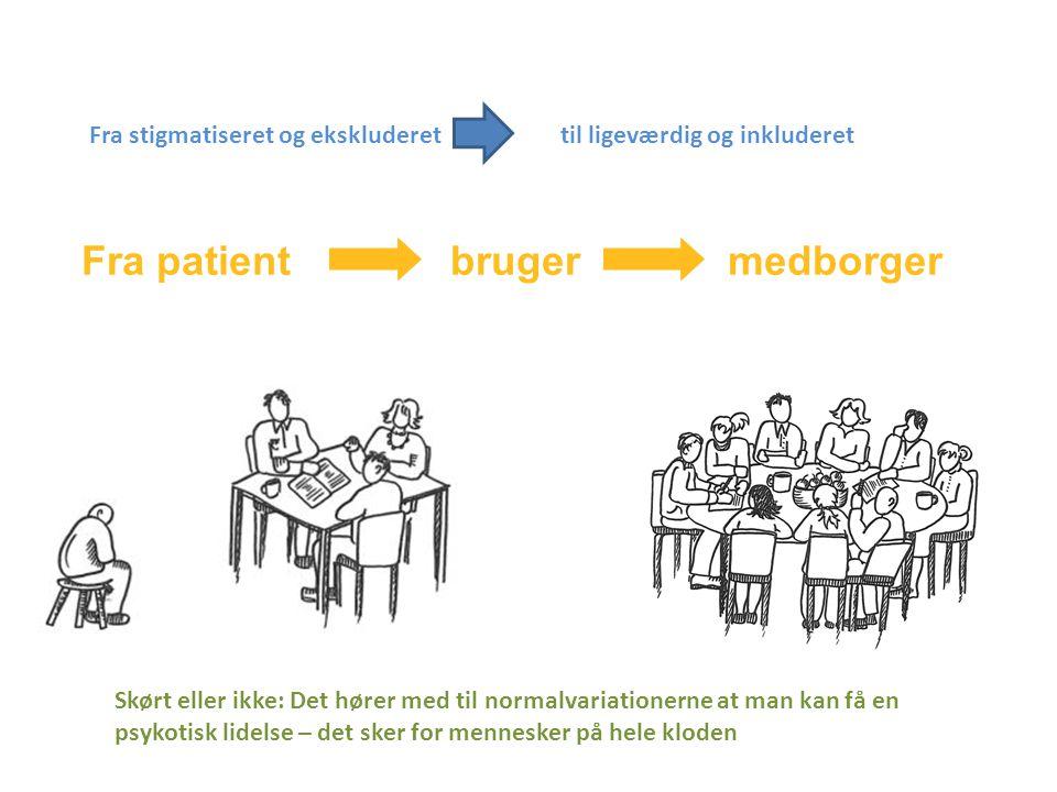 Sprogbrug Fra patient bruger medborger