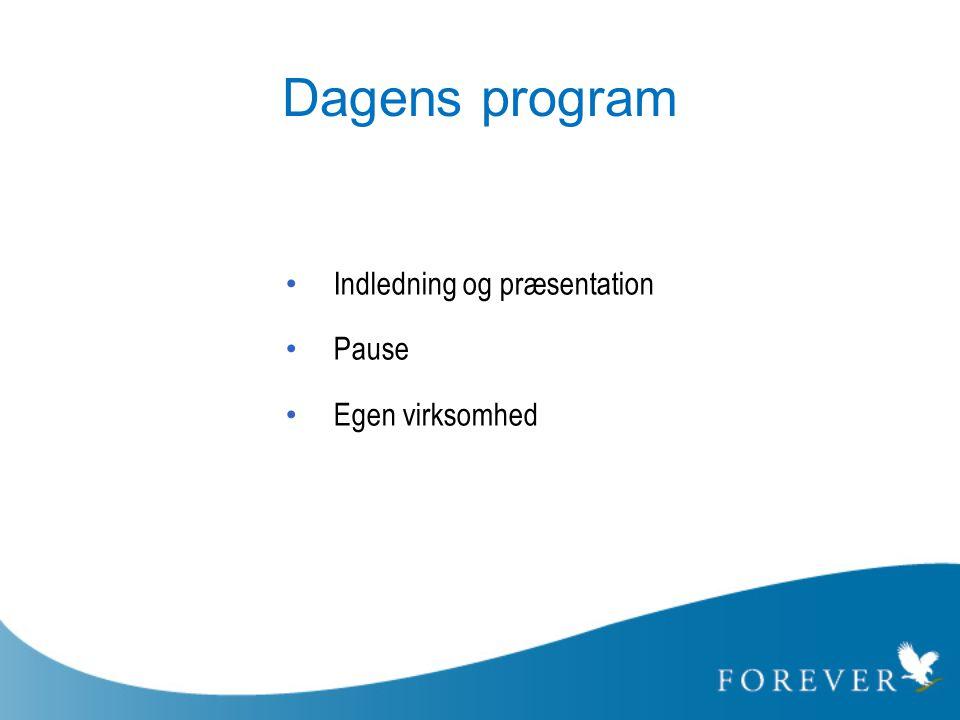 Dagens program Indledning og præsentation Pause Egen virksomhed