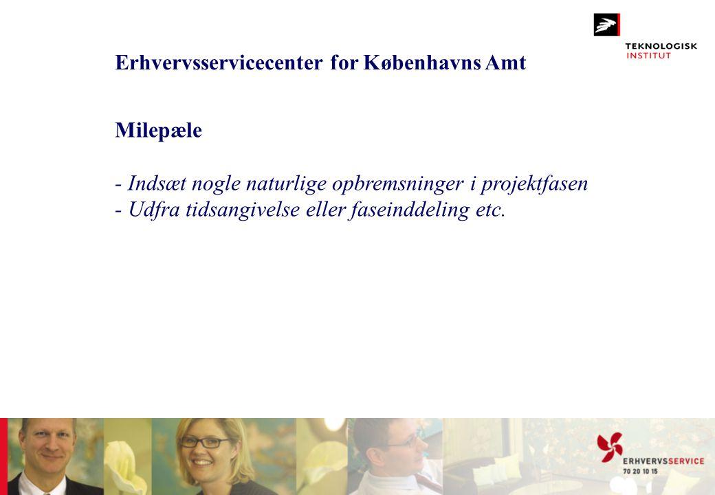 Erhvervsservicecenter for Københavns Amt
