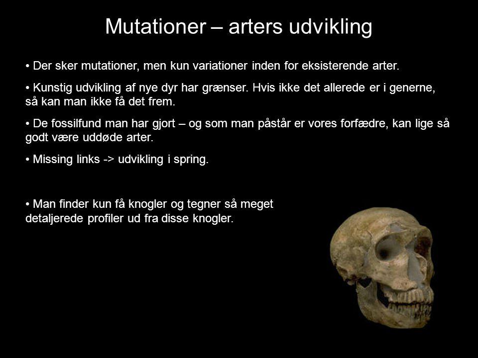 Mutationer – arters udvikling