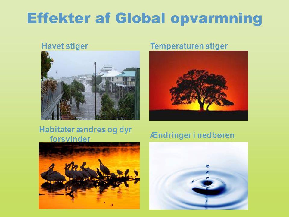 Effekter af Global opvarmning