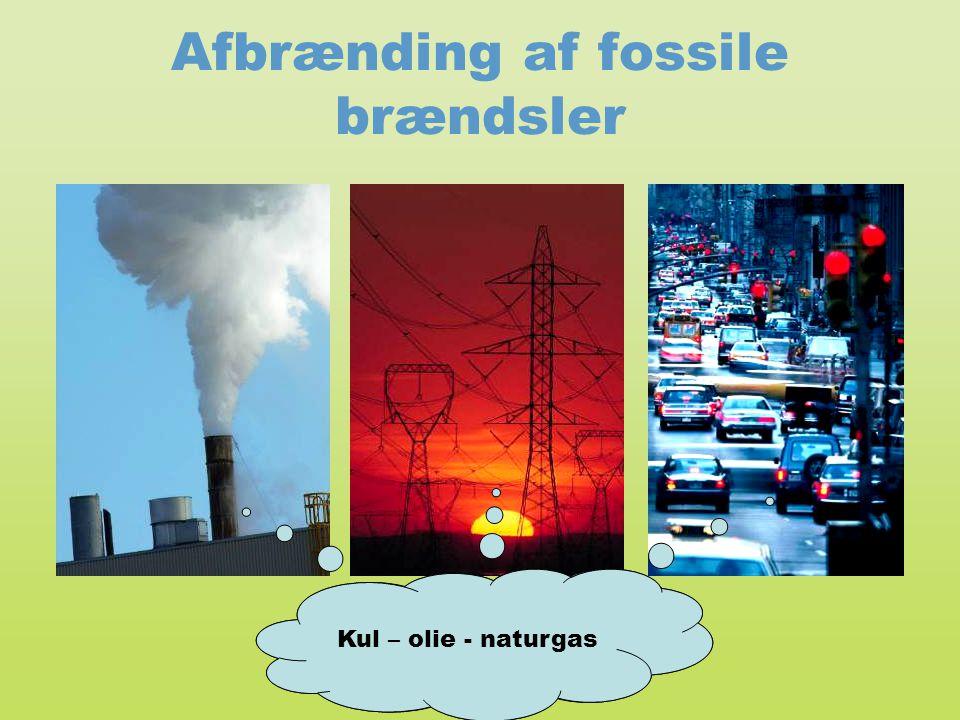 Afbrænding af fossile brændsler
