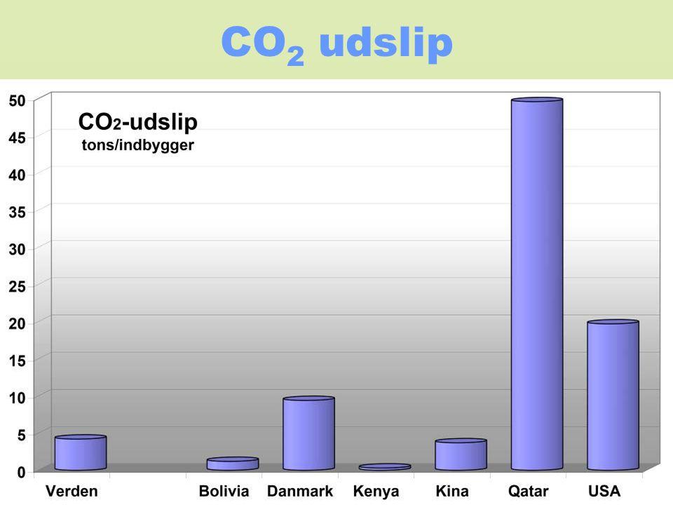 CO2 udslip