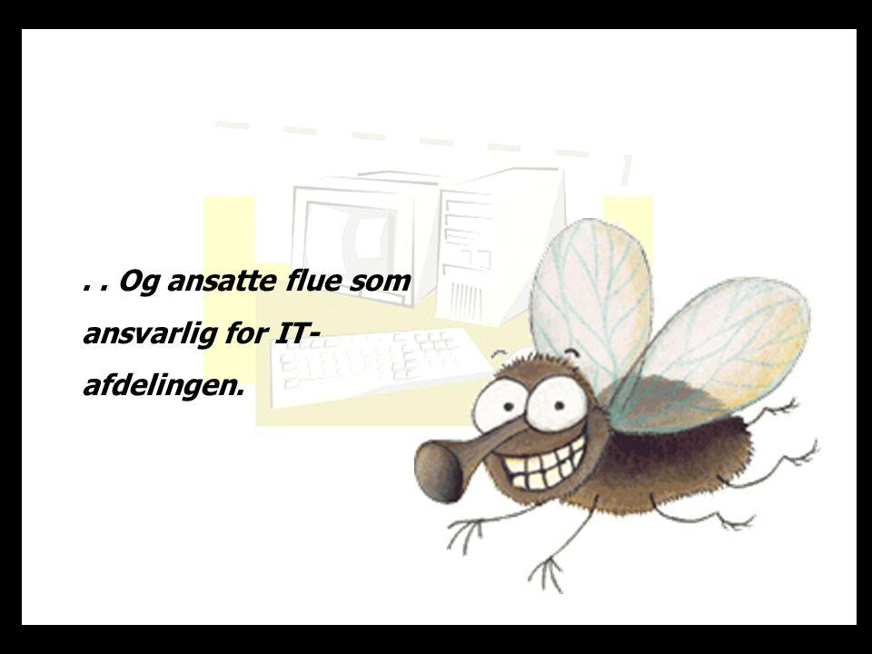. . Og ansatte flue som ansvarlig for IT-afdelingen.