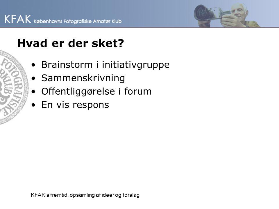 Hvad er der sket Brainstorm i initiativgruppe Sammenskrivning