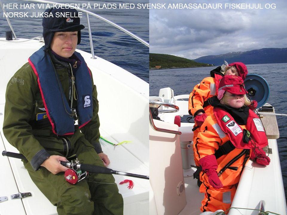 HER HAR VI A-KÆDEN PÅ PLADS MED SVENSK AMBASSADAUR FISKEHJUL OG NORSK JUKSA SNELLE