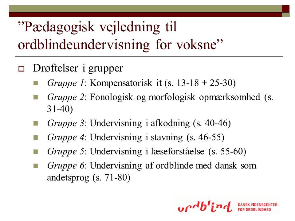 Pædagogisk vejledning til ordblindeundervisning for voksne
