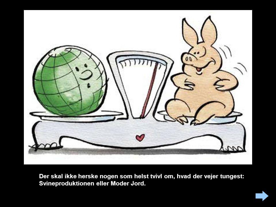 Der skal ikke herske nogen som helst tvivl om, hvad der vejer tungest: Svineproduktionen eller Moder Jord.
