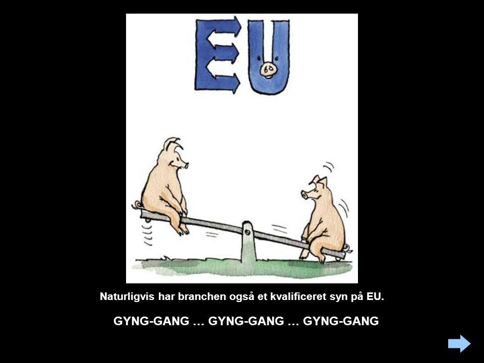 Naturligvis har branchen også et kvalificeret syn på EU.