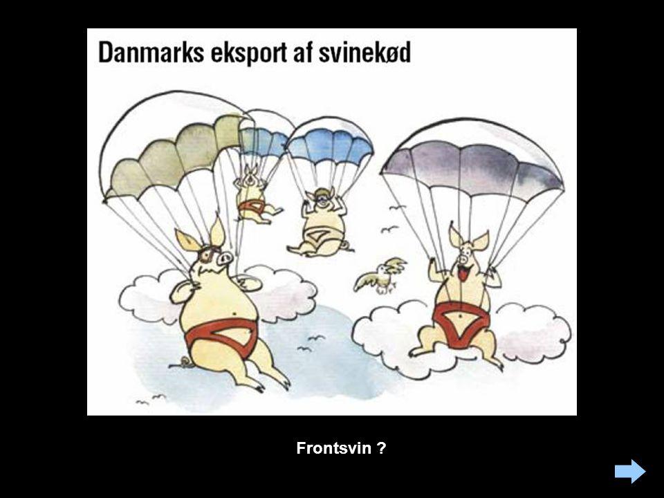 Frontsvin