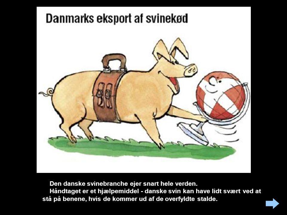 Den danske svinebranche ejer snart hele verden