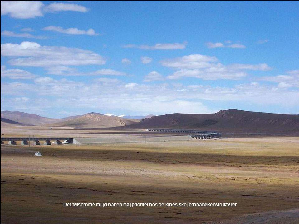 Det følsomme miljø har en høj prioritet hos de kinesiske jernbanekonstruktører
