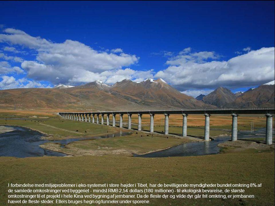 I forbindelse med miljøproblemer i øko-systemet i store højder i Tibet, har de bevilligende myndigheder bundet omkring 8% af de samlede omkostninger ved byggeriet - mindst RMB 2,54 dollars (180 millioner) - til økologisk bevarelse, de største omkostninger til et projekt i hele Kina ved bygning af jernbaner.
