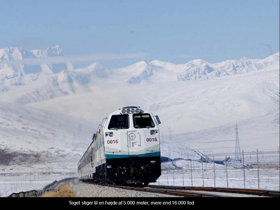 Toget stiger til en højde af 5.000 meter, mere end 16.000 fod