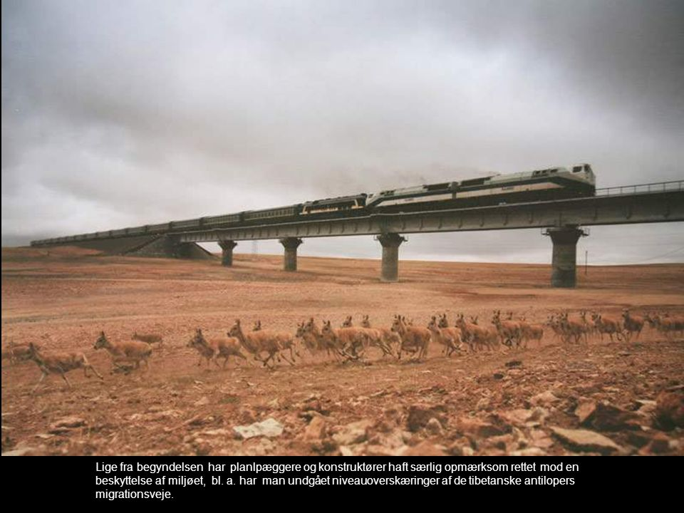 Lige fra begyndelsen har planlpæggere og konstruktører haft særlig opmærksom rettet mod en beskyttelse af miljøet, bl.