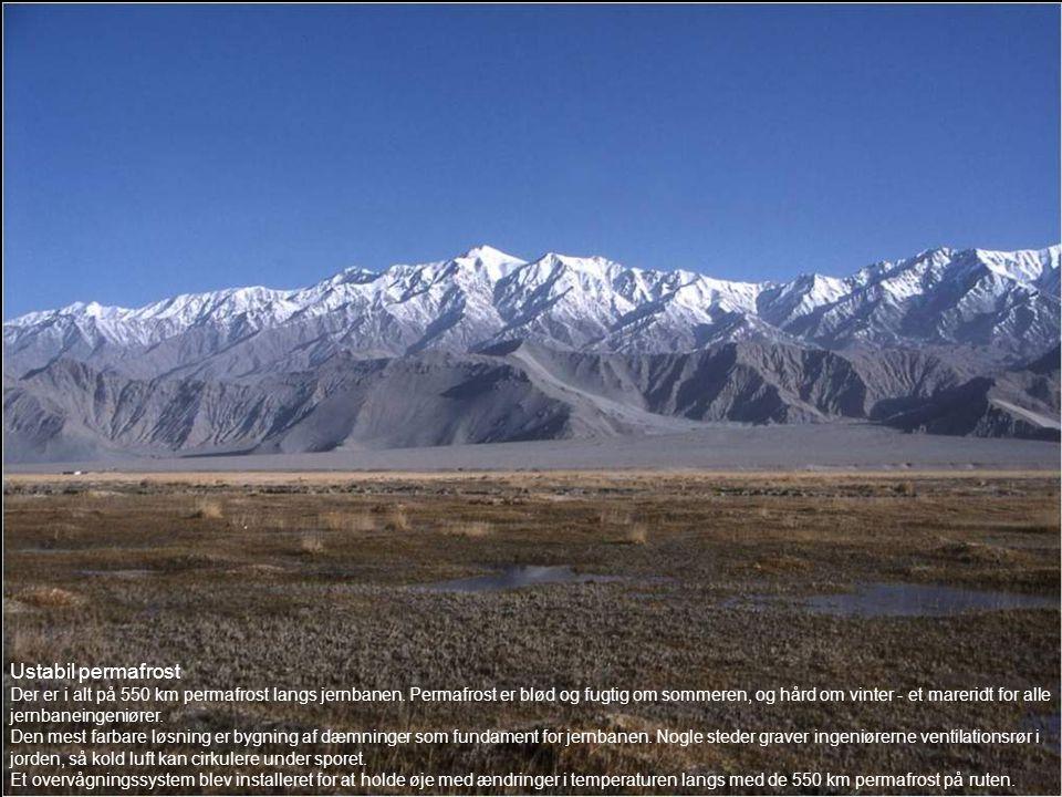 Ustabil permafrost Der er i alt på 550 km permafrost langs jernbanen