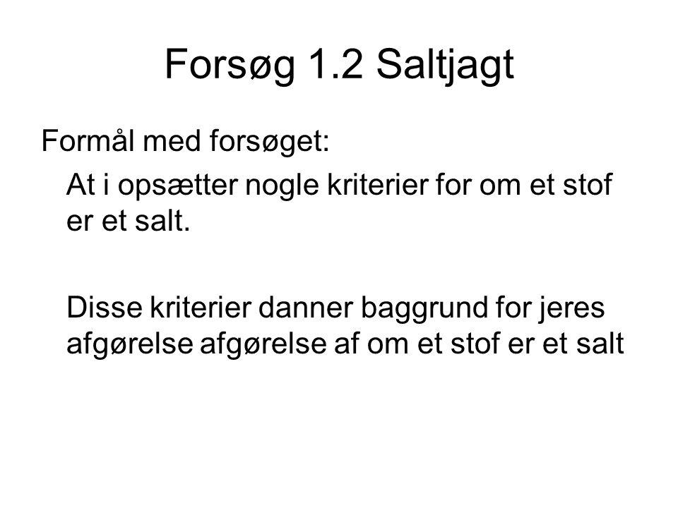 Forsøg 1.2 Saltjagt Formål med forsøget: