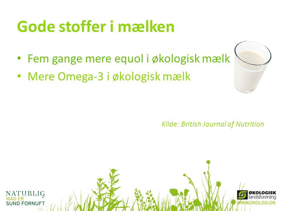 Gode stoffer i mælken Fem gange mere equol i økologisk mælk