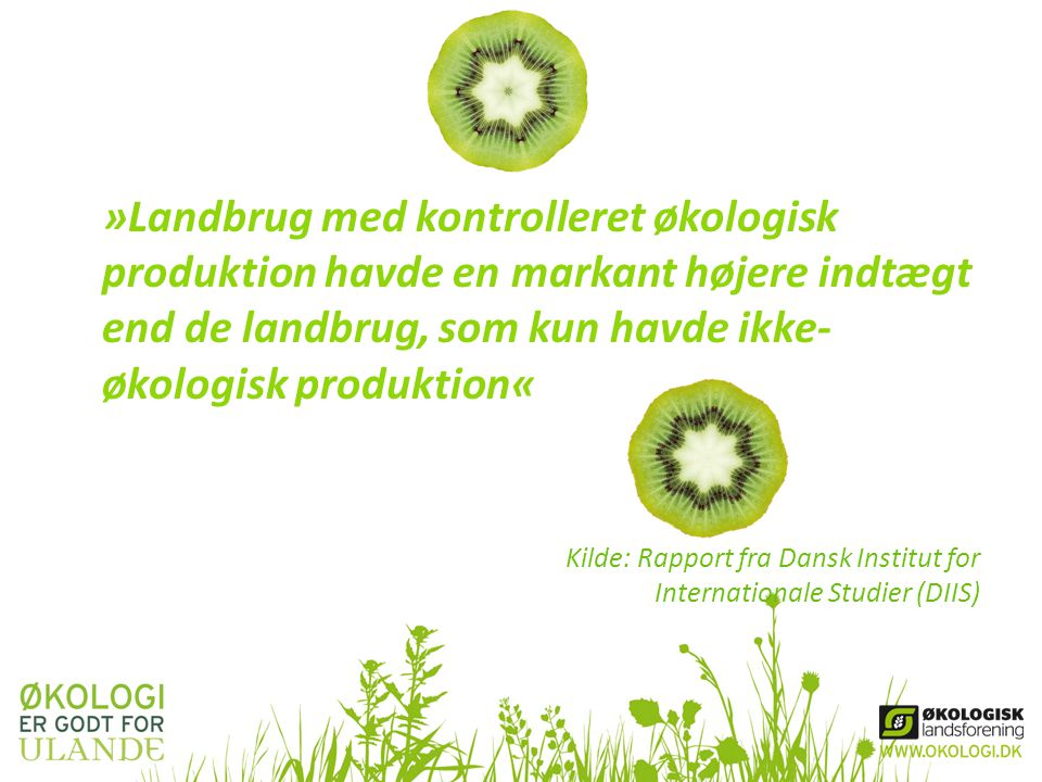 »Landbrug med kontrolleret økologisk produktion havde en markant højere indtægt end de landbrug, som kun havde ikke-økologisk produktion«
