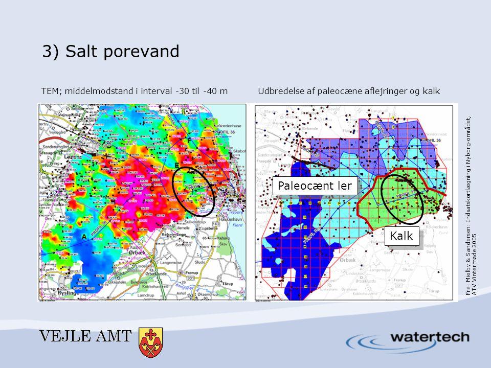 3) Salt porevand Paleocænt ler Kalk