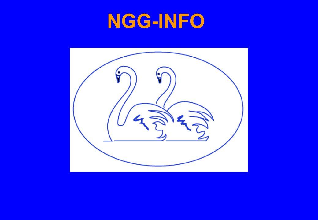 NGG-INFO 19