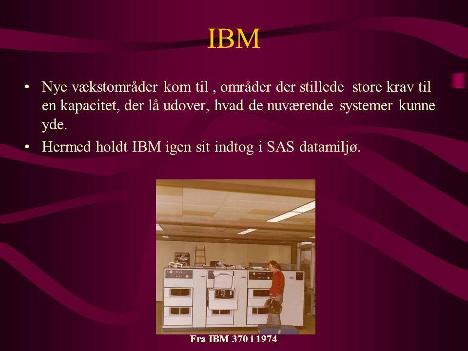 IBM Nye vækstområder kom til , områder der stillede store krav til en kapacitet, der lå udover, hvad de nuværende systemer kunne yde.