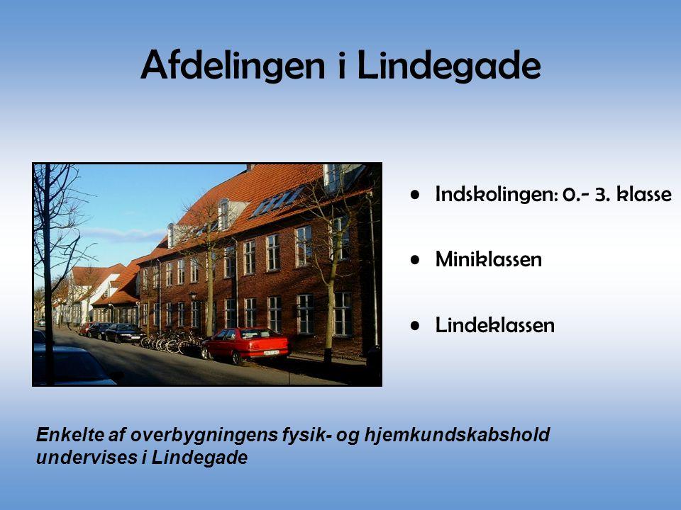 Afdelingen i Lindegade