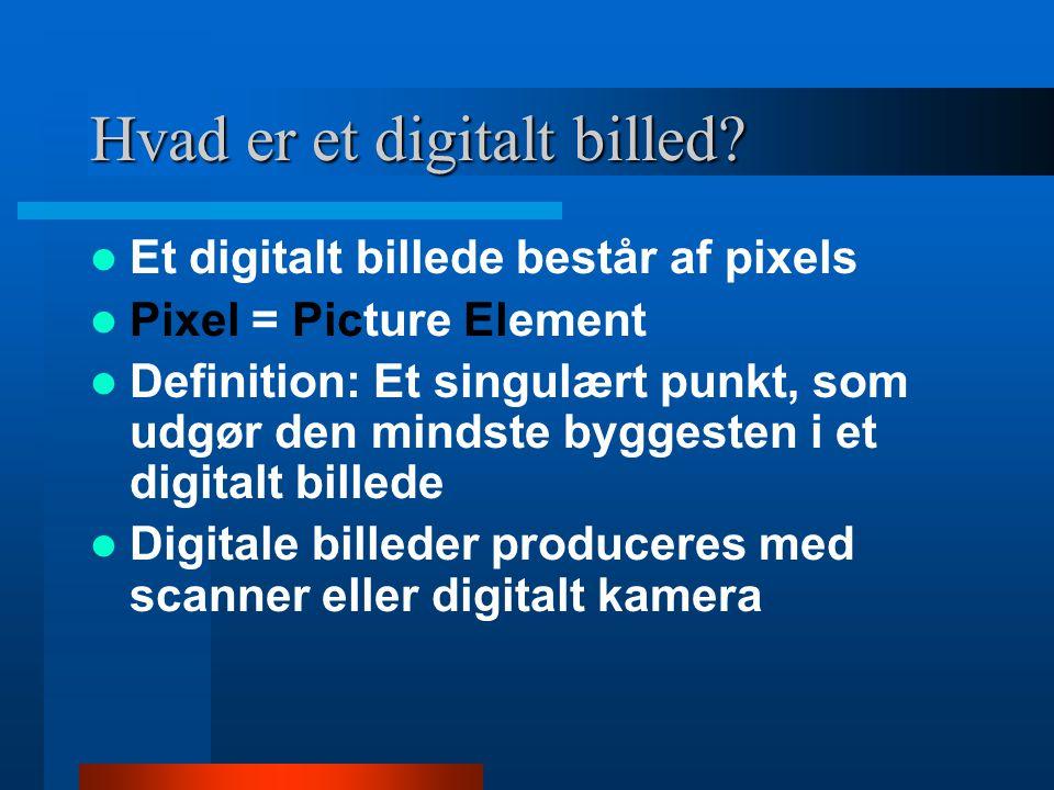 Hvad er et digitalt billed