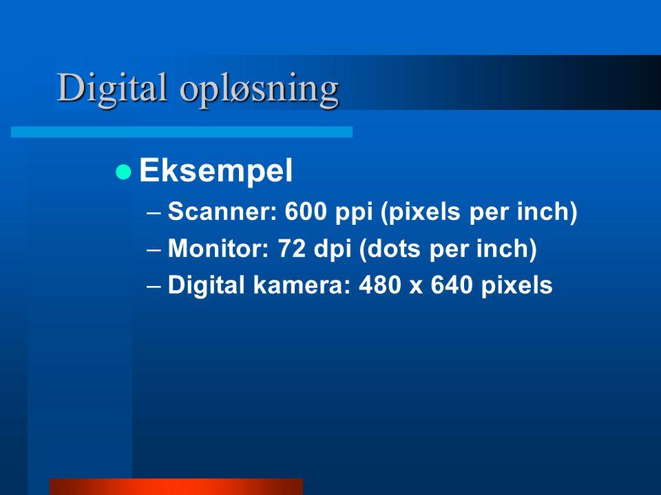 Digital opløsning Eksempel Scanner: 600 ppi (pixels per inch)