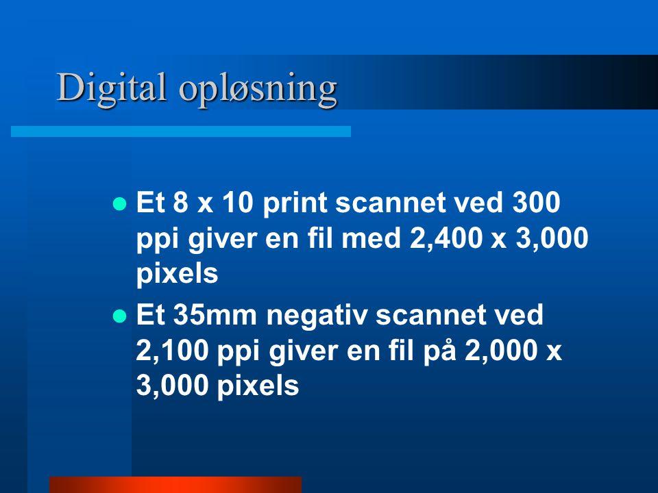 Digital opløsning Et 8 x 10 print scannet ved 300 ppi giver en fil med 2,400 x 3,000 pixels.