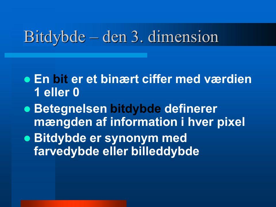 Bitdybde – den 3. dimension