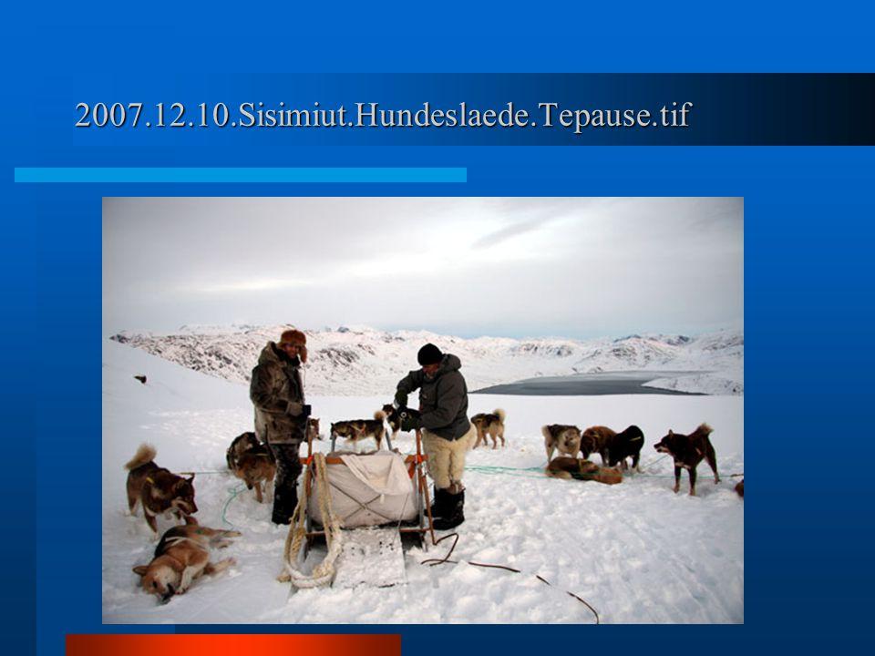 2007.12.10.Sisimiut.Hundeslaede.Tepause.tif