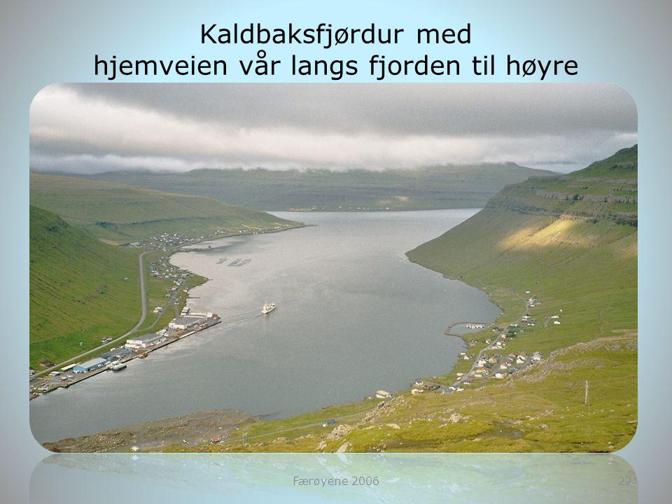 hjemveien vår langs fjorden til høyre