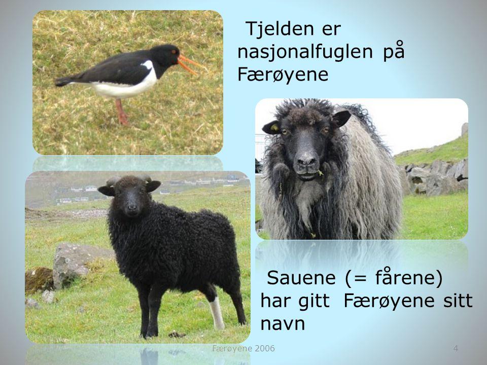 Sauene (= fårene) har gitt Færøyene sitt navn