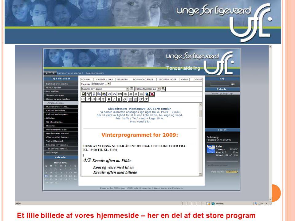 Et lille billede af vores hjemmeside – her en del af det store program