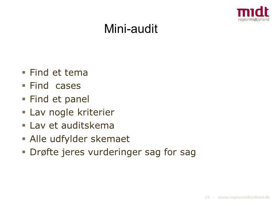 Mini-audit Find et tema Find cases Find et panel Lav nogle kriterier