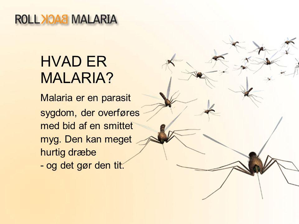 HVAD ER MALARIA Malaria er en parasit sygdom, der overføres