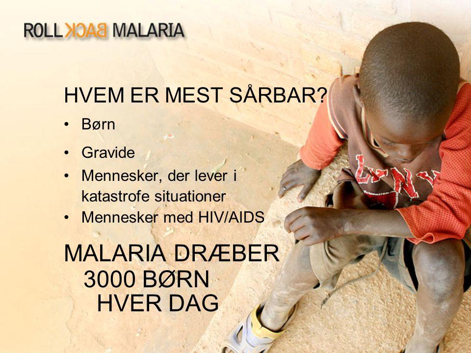 MALARIA DRÆBER 3000 BØRN HVER DAG HVEM ER MEST SÅRBAR Børn Gravide