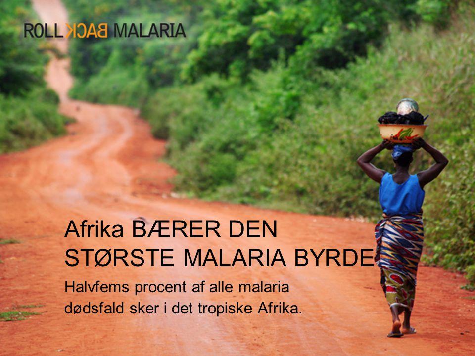 Afrika BÆRER DEN STØRSTE MALARIA BYRDE