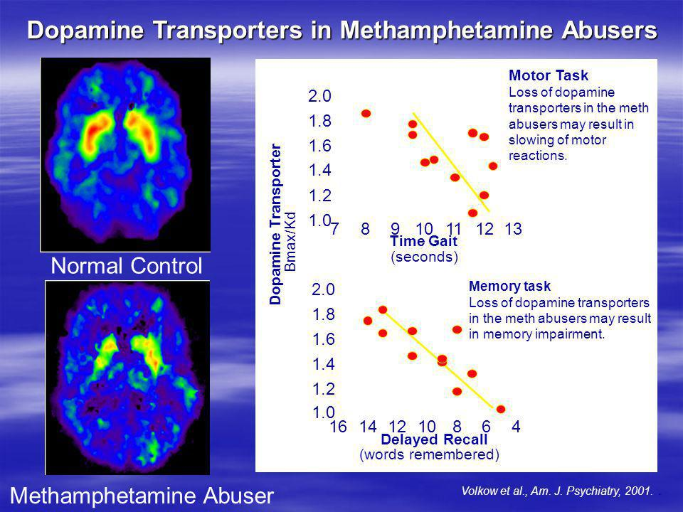 Dopamine Transporters in Methamphetamine Abusers