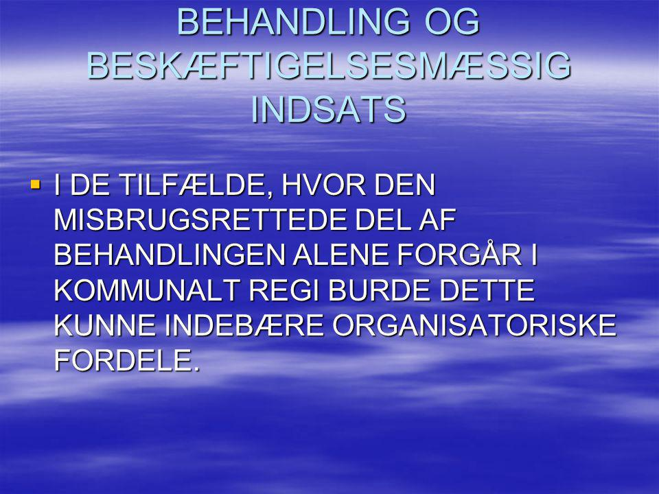 BEHANDLING OG BESKÆFTIGELSESMÆSSIG INDSATS
