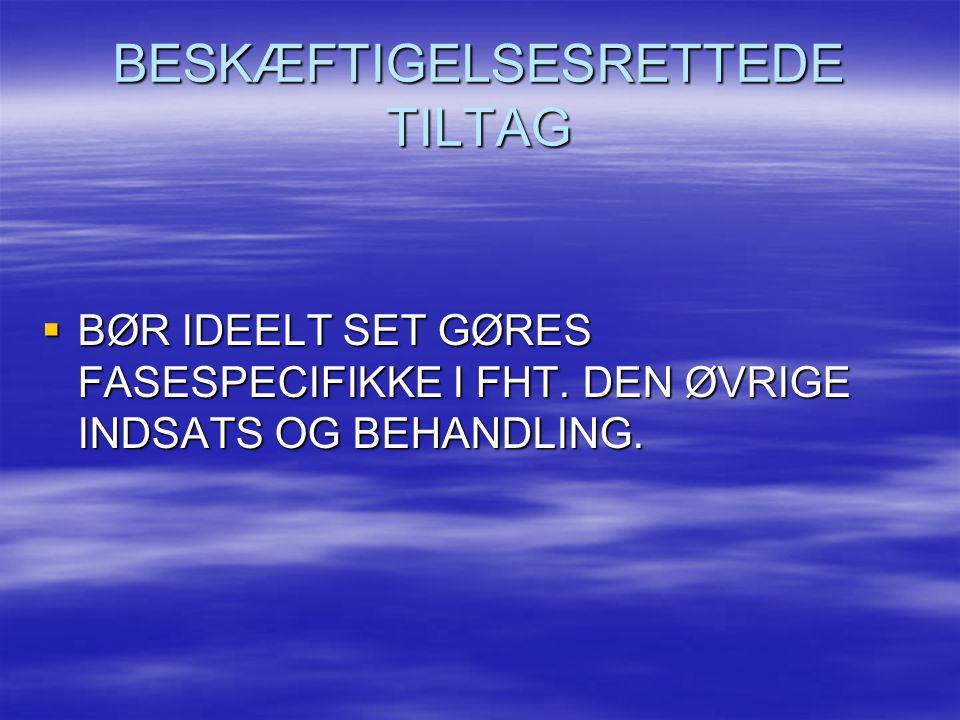 BESKÆFTIGELSESRETTEDE TILTAG