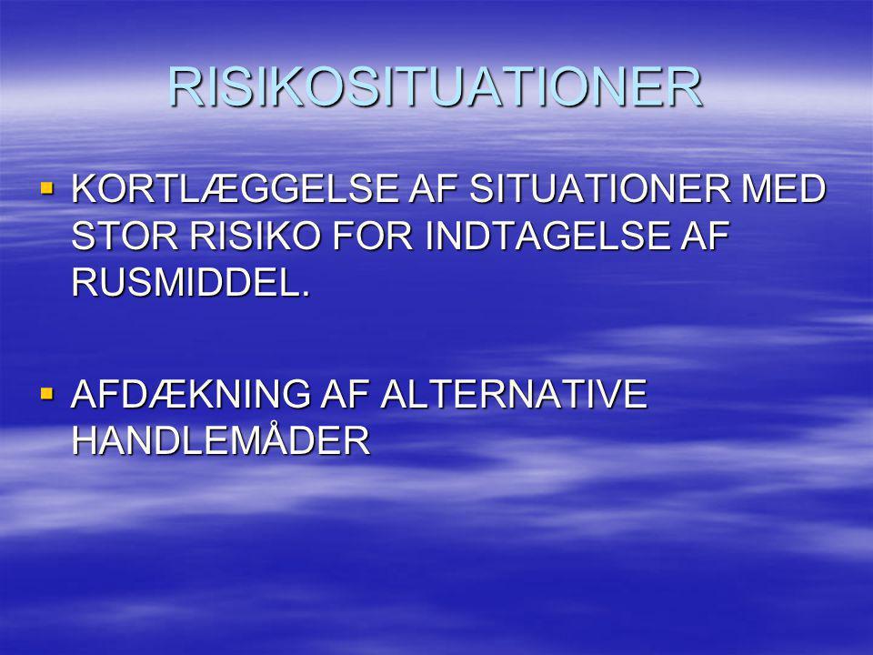 RISIKOSITUATIONER KORTLÆGGELSE AF SITUATIONER MED STOR RISIKO FOR INDTAGELSE AF RUSMIDDEL.
