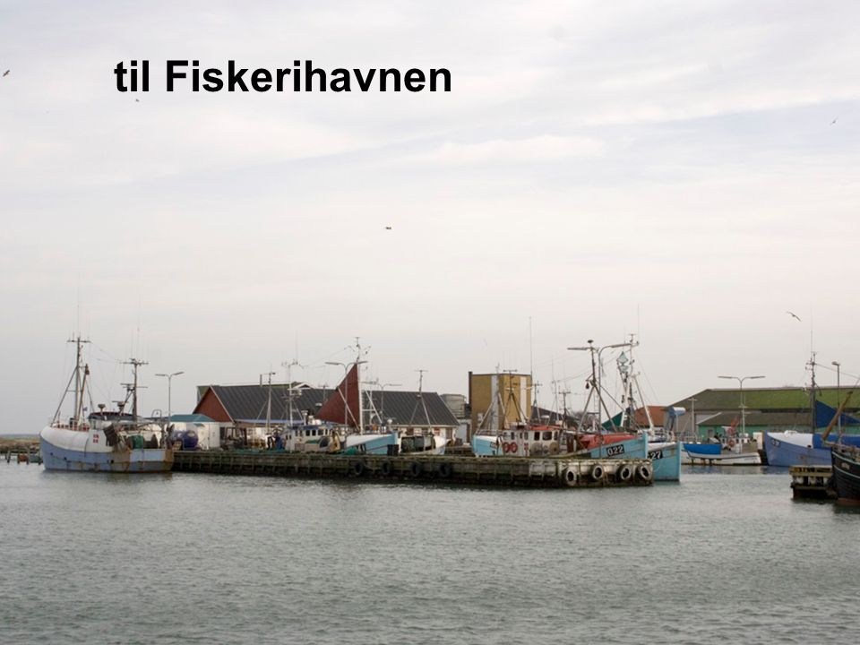 til Fiskerihavnen