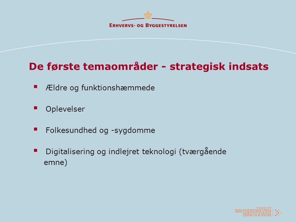 De første temaområder - strategisk indsats