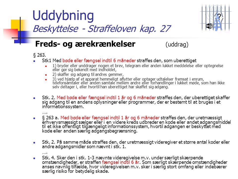 Uddybning Beskyttelse - Straffeloven kap. 27