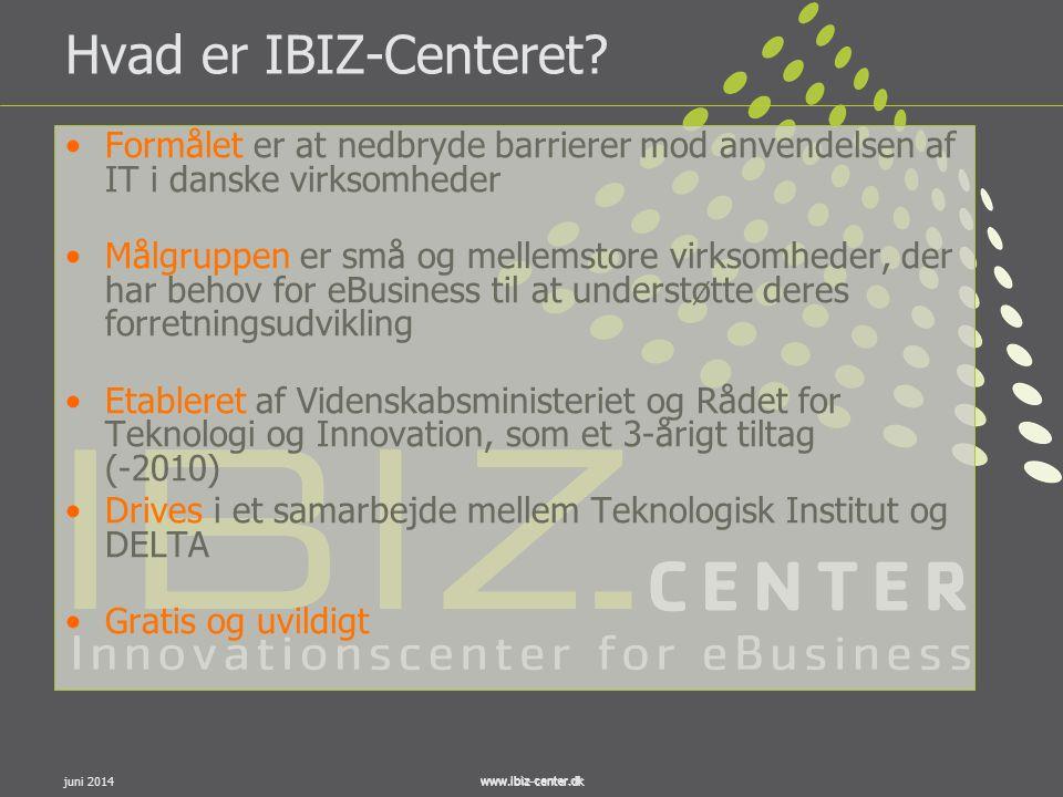 Hvad er IBIZ-Centeret Formålet er at nedbryde barrierer mod anvendelsen af IT i danske virksomheder.