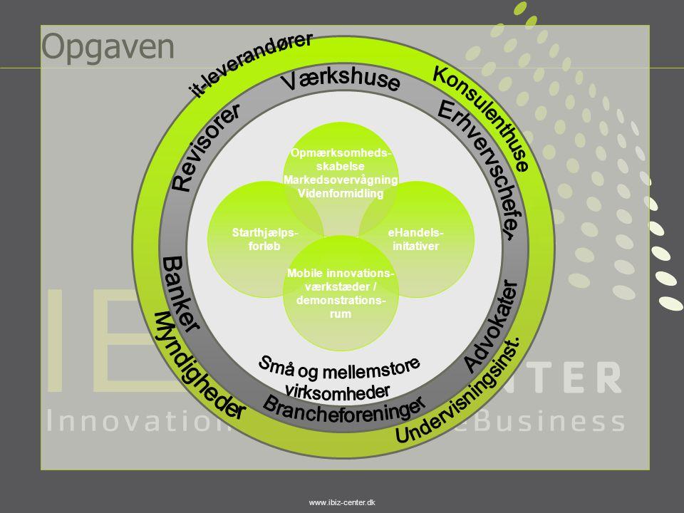 Opgaven it-leverandører Værkshuse Konsulenthuse Revisorer